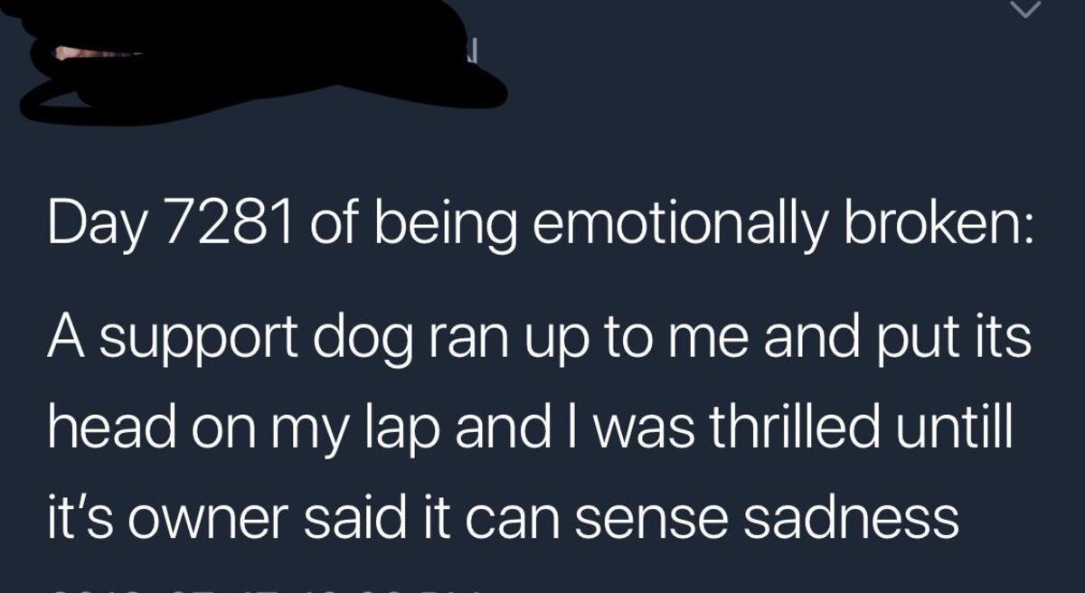 Sort pissy