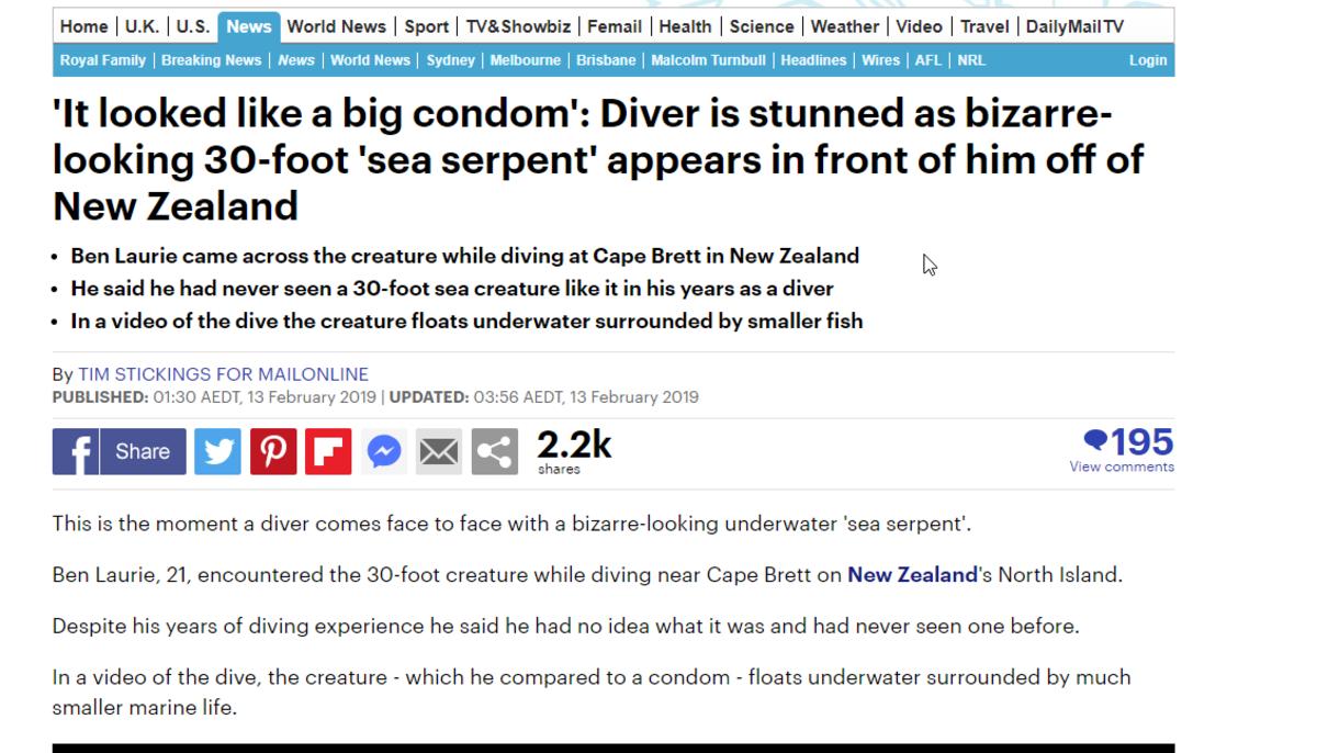 Floating condom - New Zealand wtf?