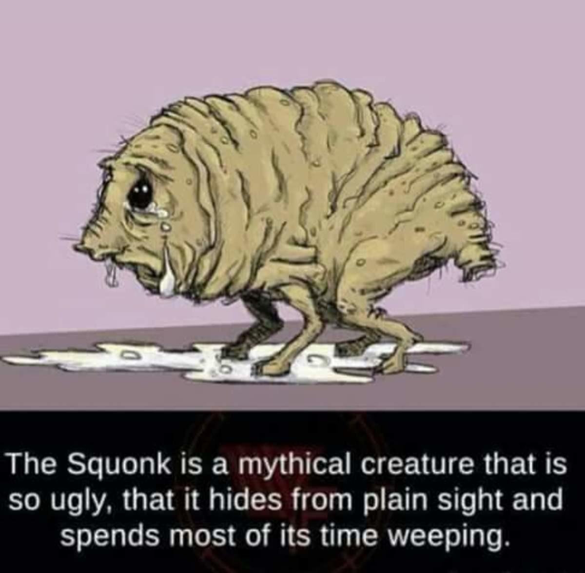 Le Squonk