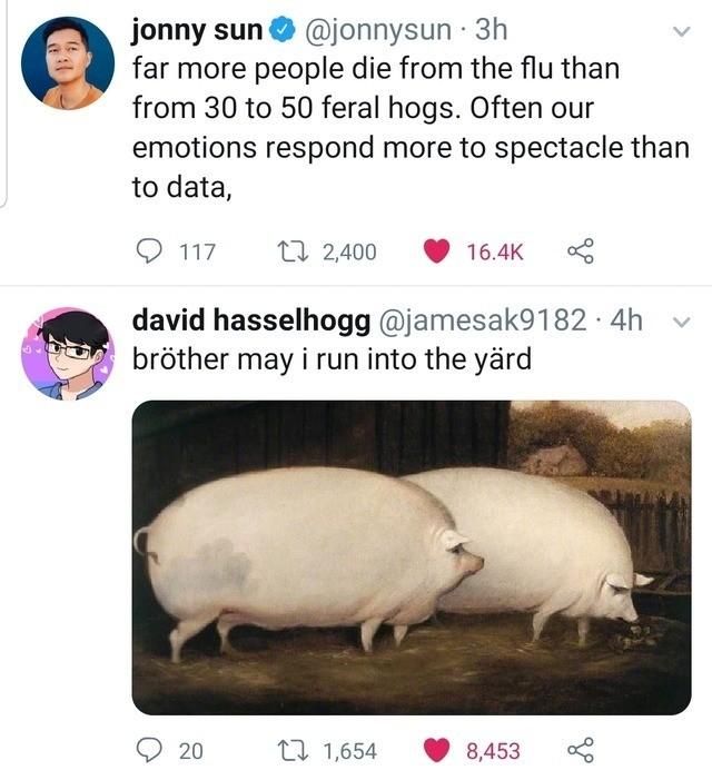 30 50 Feral Hogs Memes Reddit