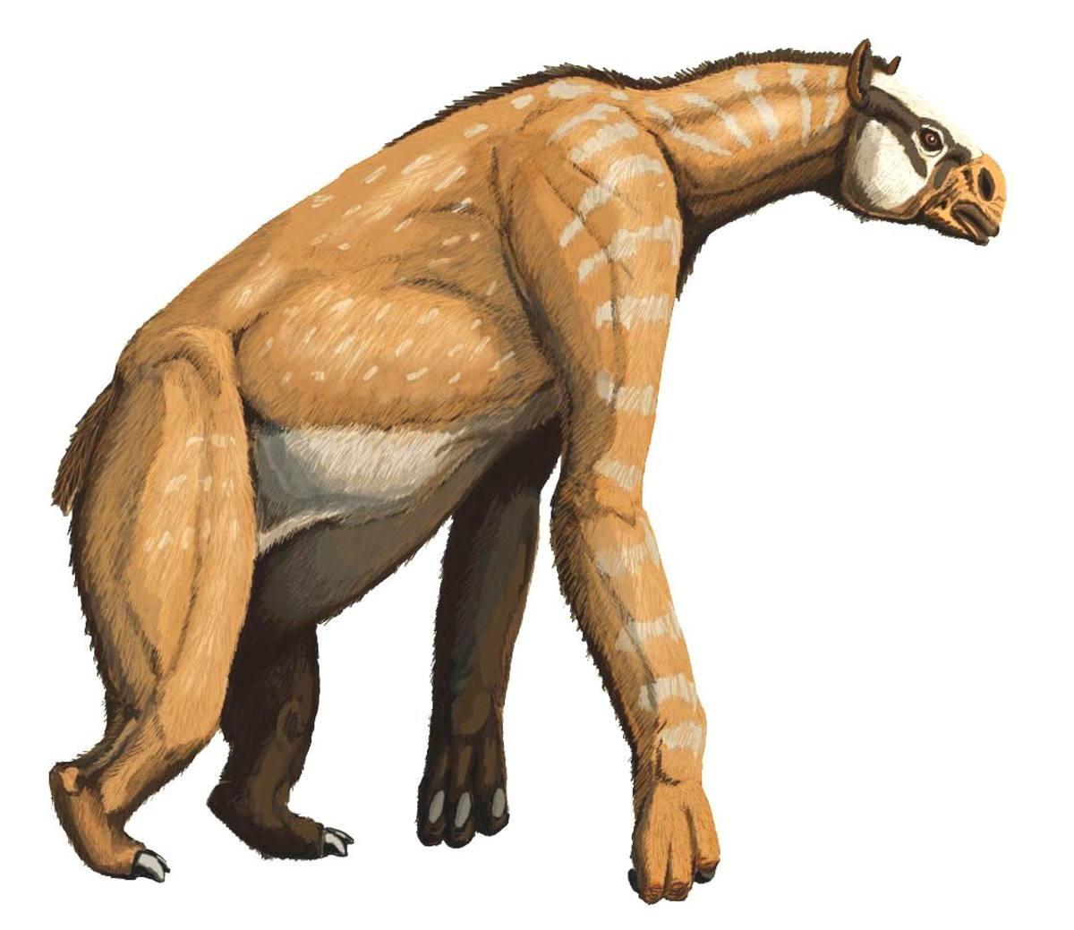 yet another top 10 prehistoric animals